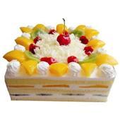 穆斯蛋糕/金色烂漫